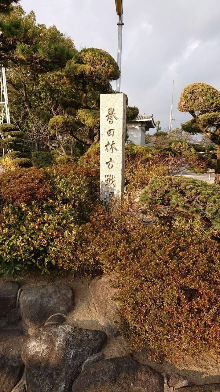 誉田八幡宮 - 羽曳野市/大阪府 の見どころ。南北朝か... by るんた   Omairi(おまいり)