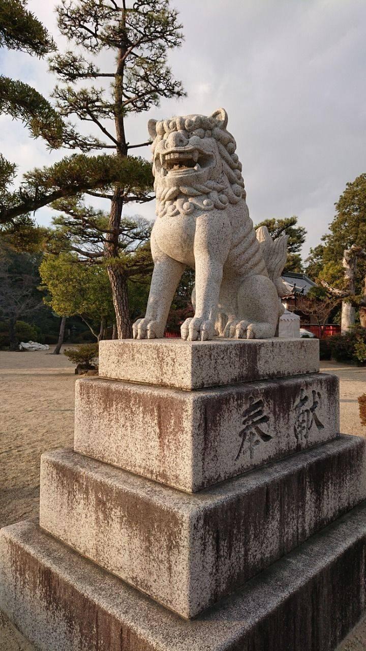 誉田八幡宮 - 羽曳野市/大阪府 の見どころ。なかなか... by るんた | Omairi(おまいり)