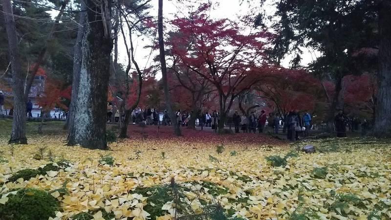 南禅寺 - 京都市/京都府 の見どころ。山門から御本堂... by みづ | Omairi(おまいり)