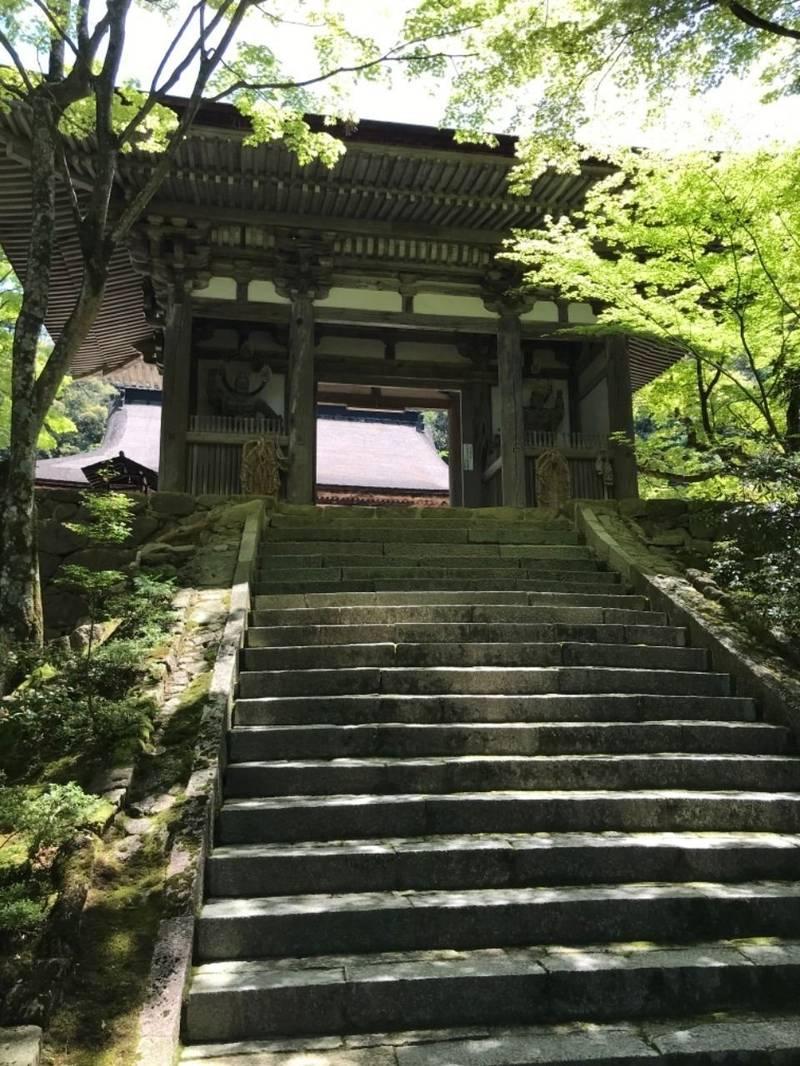 西明寺 - 犬上郡甲良町/滋賀県 の見どころ。もみじに... by ぶんた | Omairi(おまいり)