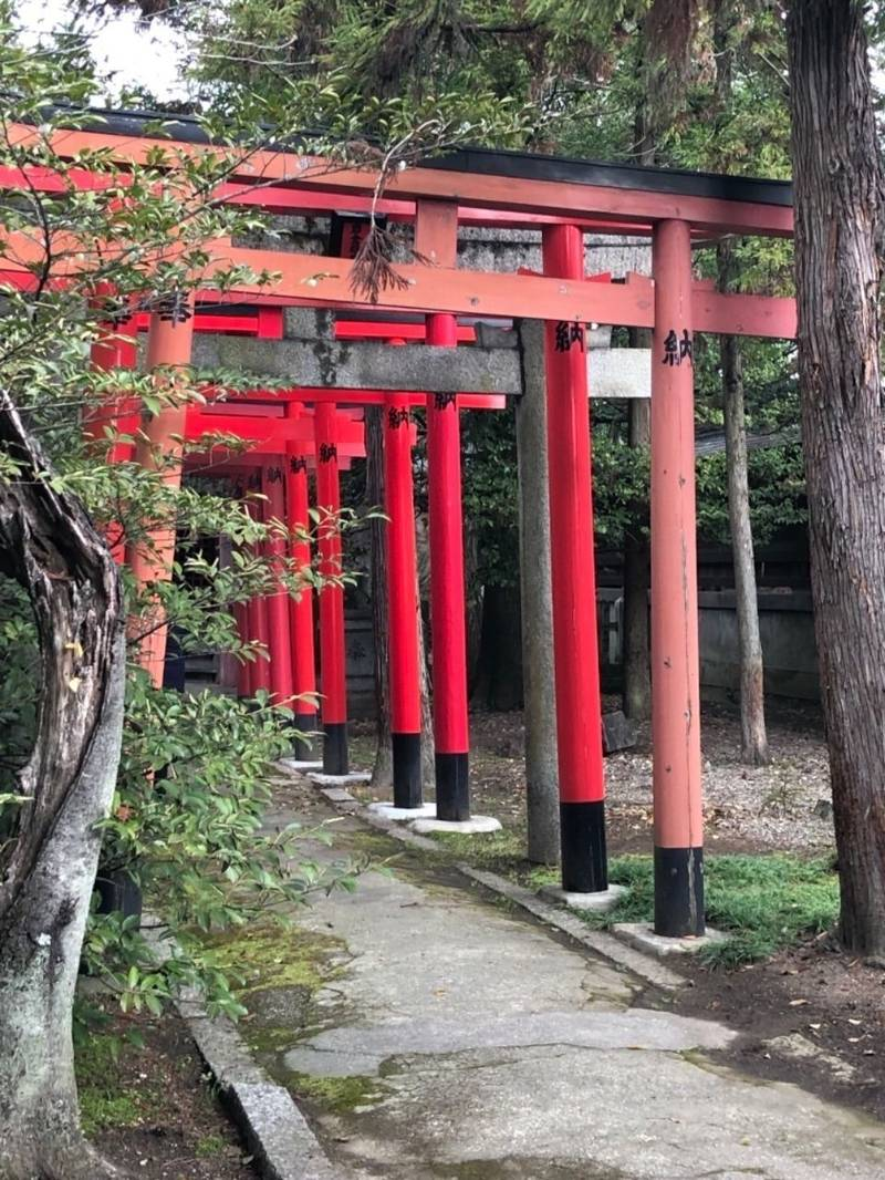姫路神社 - 姫路市/兵庫県 の見どころ。赤い鳥居が連... by aki   Omairi(おまいり)