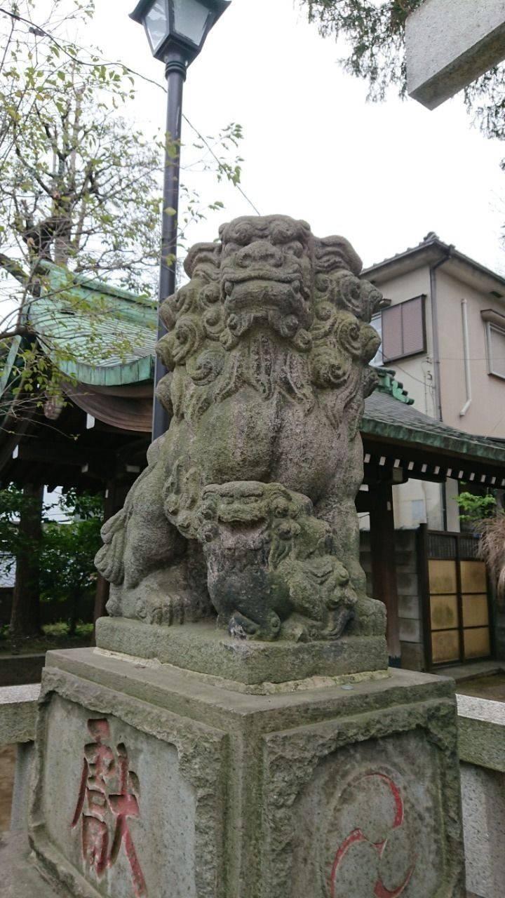 居木神社 - 品川区/東京都 の見どころ。吽形の狛犬さ... by ケロ08 | Omairi(おまいり)