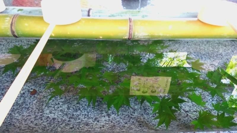 由加神社本宮 - 倉敷市/岡山県 の見どころ。手水舎の... by 巴 | Omairi(おまいり)