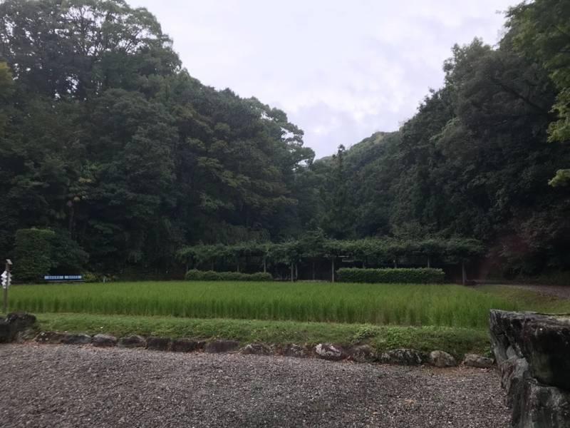 猿田彦神社 - 伊勢市/三重県 の見どころ。みちひらき... by たかお | Omairi(おまいり)