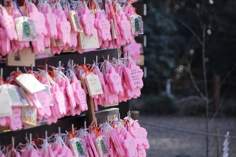 櫻木神社 - 野田市/千葉県 の見どころ。たくさんの絵... by ずんくま | Omairi(おまいり)