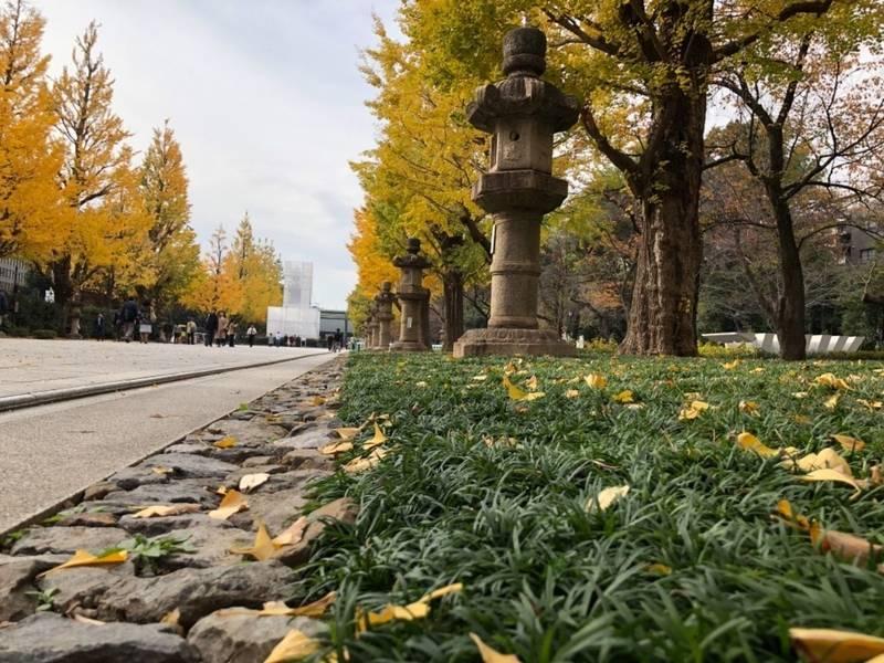 靖国神社 - 千代田区/東京都 の見どころ。銀杏並木の... by ちょこさん | Omairi(おまいり)