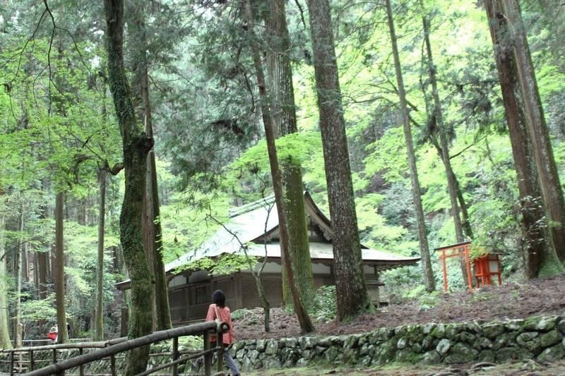 高山寺 - 京都市/京都府 の見どころ。森の中に建物が... by 竹蔵 | Omairi(おまいり)