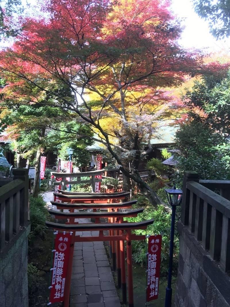 花園稲荷神社 - 台東区/東京都 の見どころ。稲荷神社... by janmasa | Omairi(おまいり)
