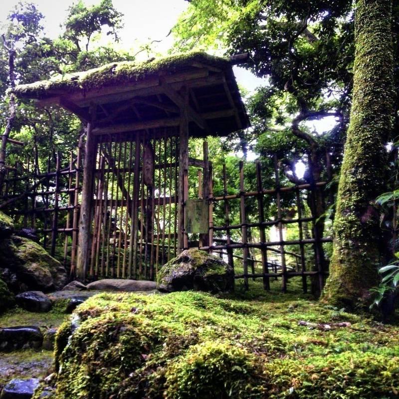 高山寺 - 京都市/京都府 の見どころ。木々の中に苔む... by 大慧和尚   Omairi(おまいり)