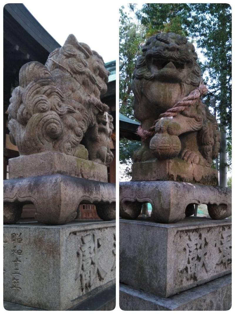 坂手神社 - 一宮市/愛知県 | Omairi(おまいり)