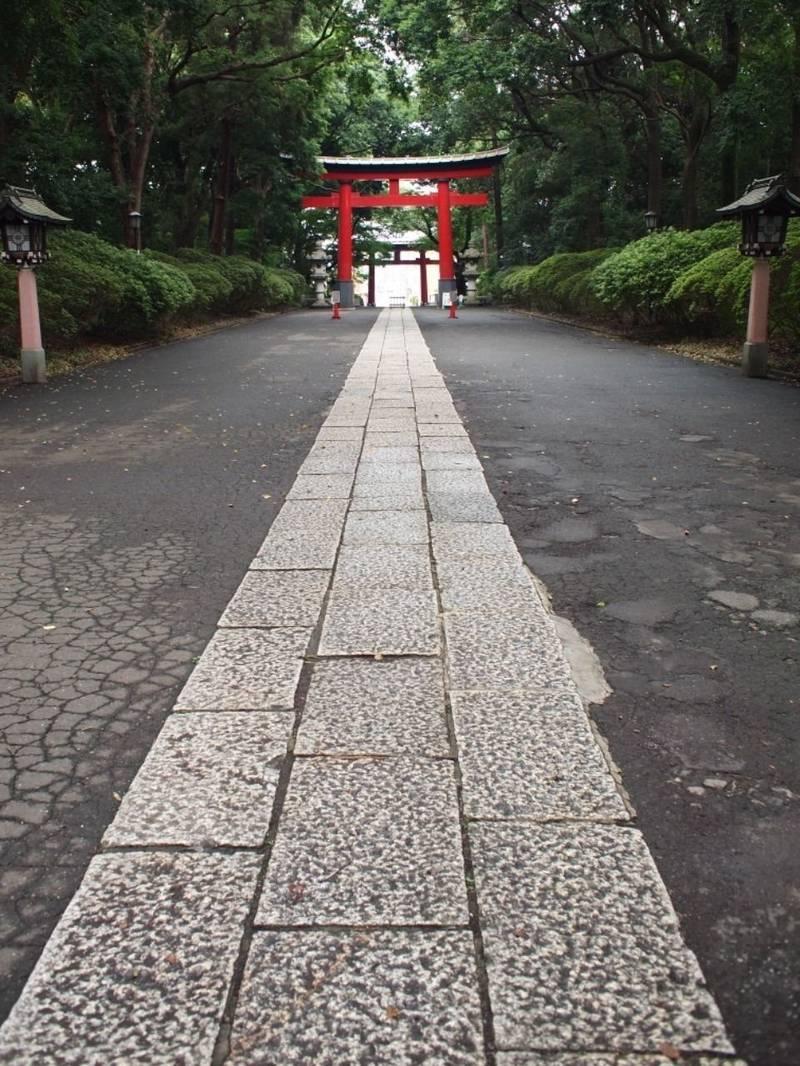 大宮八幡宮 - 杉並区/東京都 の見どころ。都会にある... by たけとと   Omairi(おまいり)