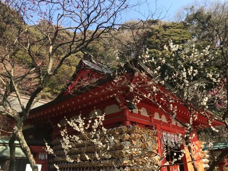 荏柄天神社 - 鎌倉市/神奈川県 の見どころ。拝殿横の... by とと   Omairi(おまいり)