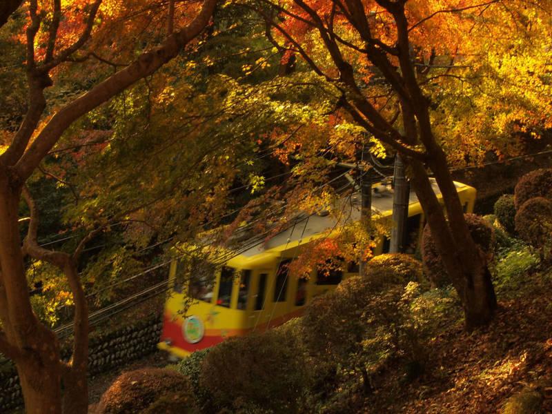 高尾山薬王院 - 八王子市/東京都 の立ち寄り。山の中... by 雪花 | Omairi(おまいり)