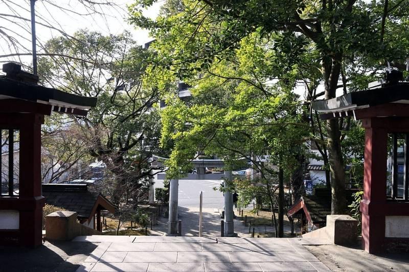 鹿児島神社 - 鹿児島市/鹿児島県 の見どころ。周りよ... by nana | Omairi(おまいり)