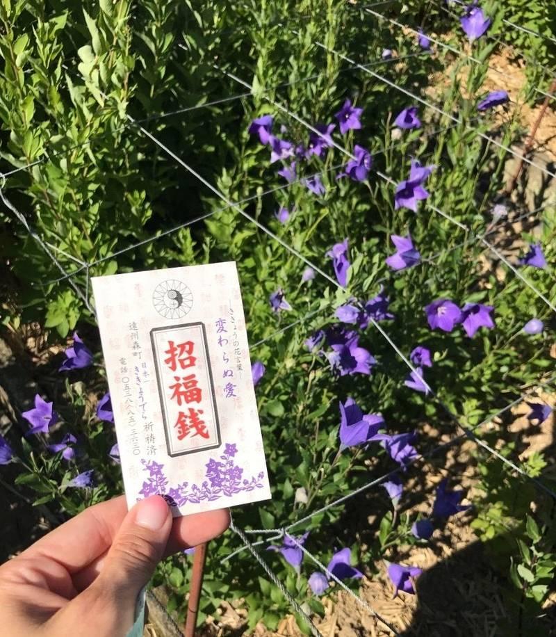 香勝寺 - 周智郡森町/静岡県 の見どころ。ききょう庭... by ゆうこりん | Omairi(おまいり)
